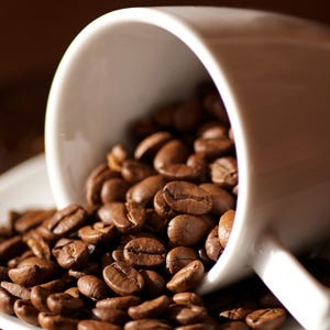 squadra di qualità del caffè verde