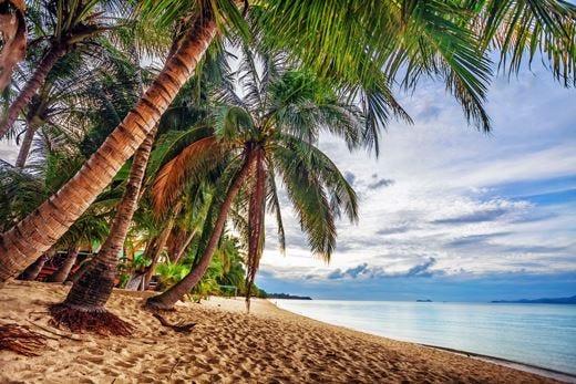 Crociera, quali sono le mete preferite?In testa Caraibi, Baleari e isole greche