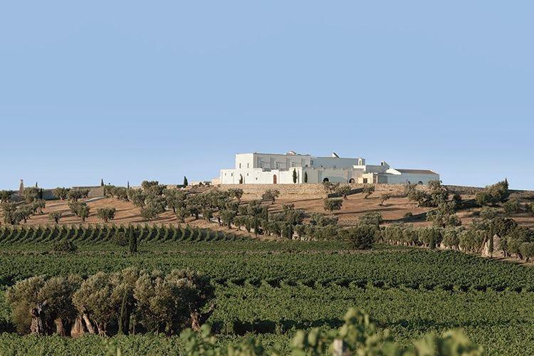Amastuola, ospitalità a tutto tondo Vino, cucina gourmet e benessere