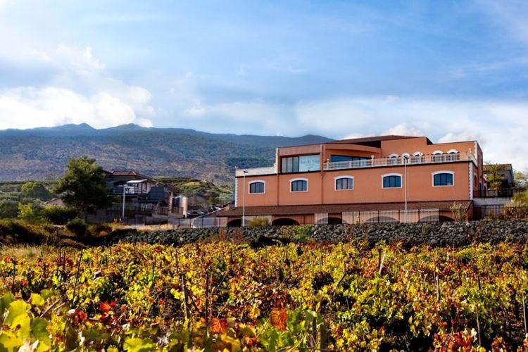 Antichi Vinai sull'Etna Vini naturali come una volta