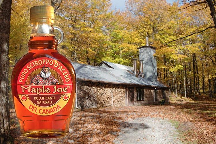 Sciroppo d'acero Maple Joe Dal Canada il dolcificante nobile