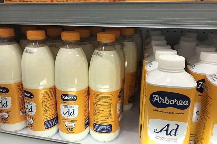 Arborea, specialisti del latte con stabilimenti in tutta Italia