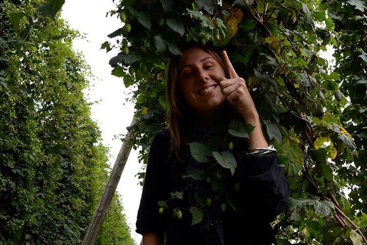 Birra artigianale in Emilia Romagna Cresce l'interesse del pubblico