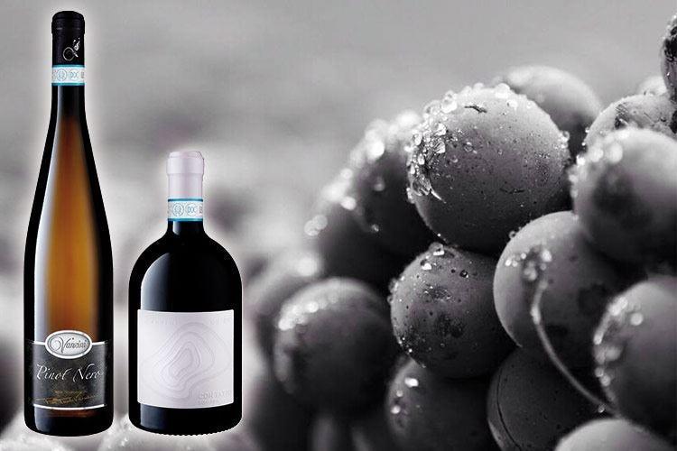 Pinot Nero e Bonarda Vanzini Perle dell'Oltrepò Pavese