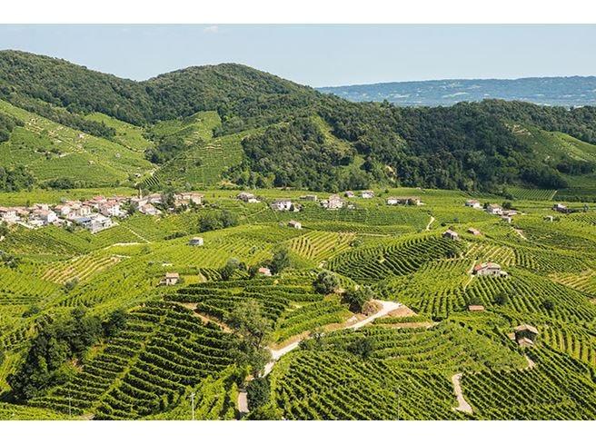 Boom di Prosecco all'estero È il vino italiano più esportato