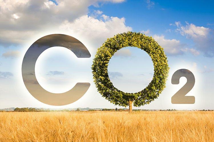 Molino Pivetti guarda al futuro: un webinar dedicato all'ambiente e ospiti d'eccezione
