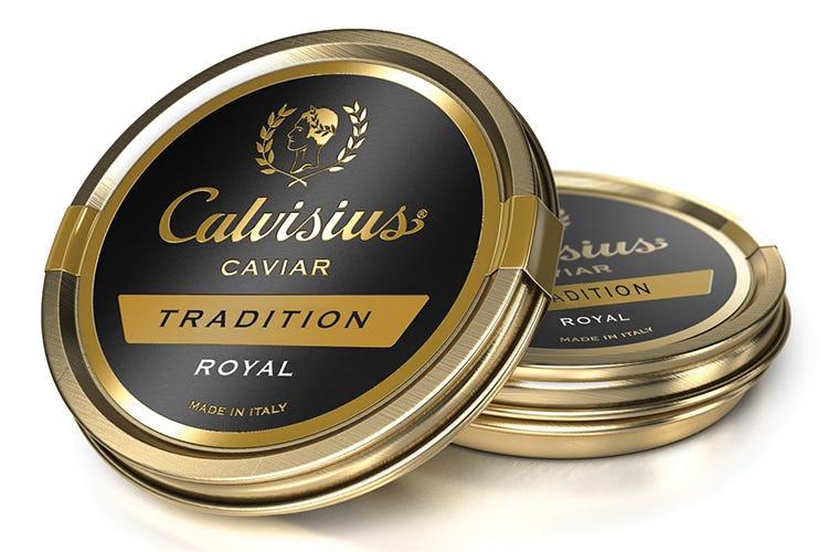 Calvisius Tradition Royal Gusto equilibrato ed elegante
