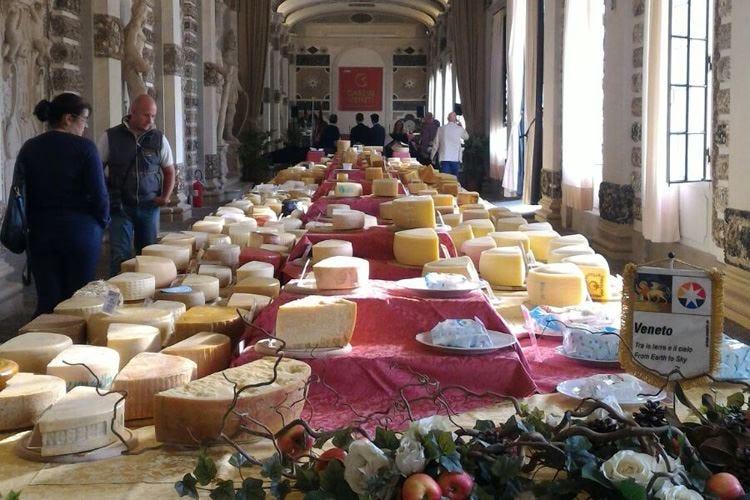 Caseus Veneti 2018 In mostra 400 formaggi da 70 caseifici