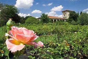 A Castello Quistini corso di Bioenergetic landscapes, per realizzare giardini terapeutici bioenergetici