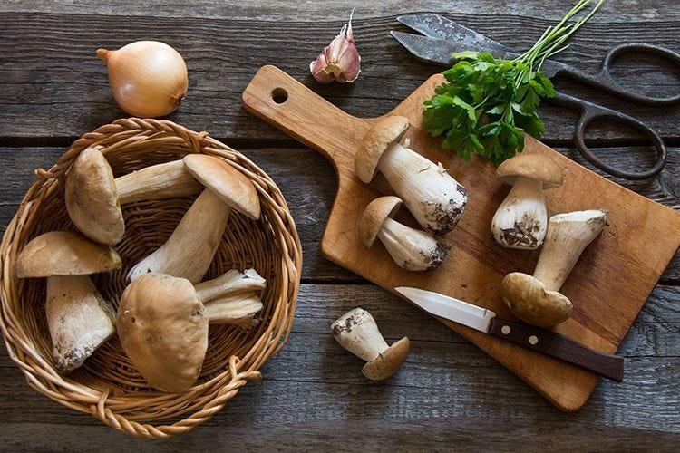 Cena di funghi al Chic'n Quick Il benvenuto all'autunno di Sadler
