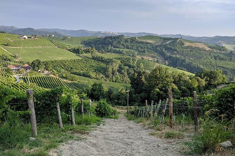 "Langhe, retroscena ""food"""