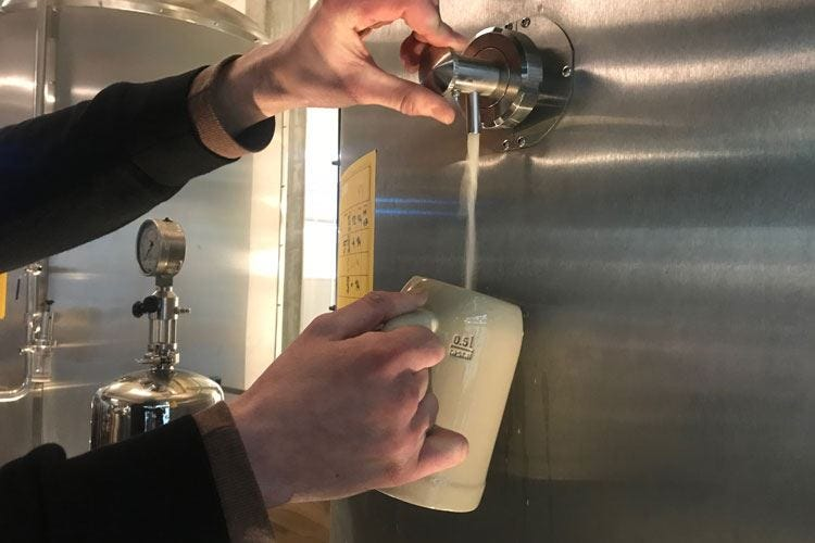 """Edit Hellesbock, chiara e più alcolica Una birra """"tedesca"""" da condividere"""