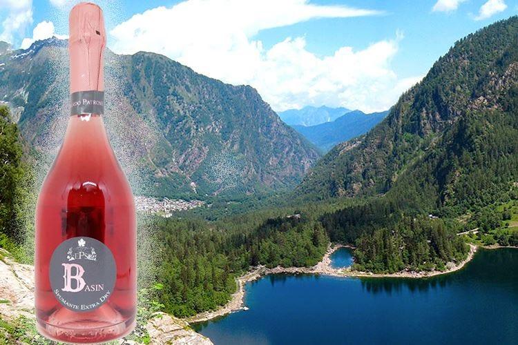 Basin, il Rosé Extra Dry nato dalle uve della val d'Ossola