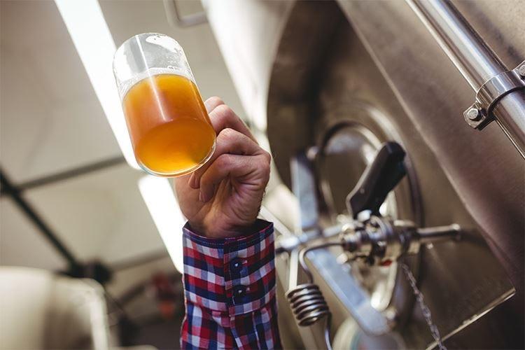 Free House Brewery, 1ª edizione a Trieste Al salone anche degustazioni e concorsi