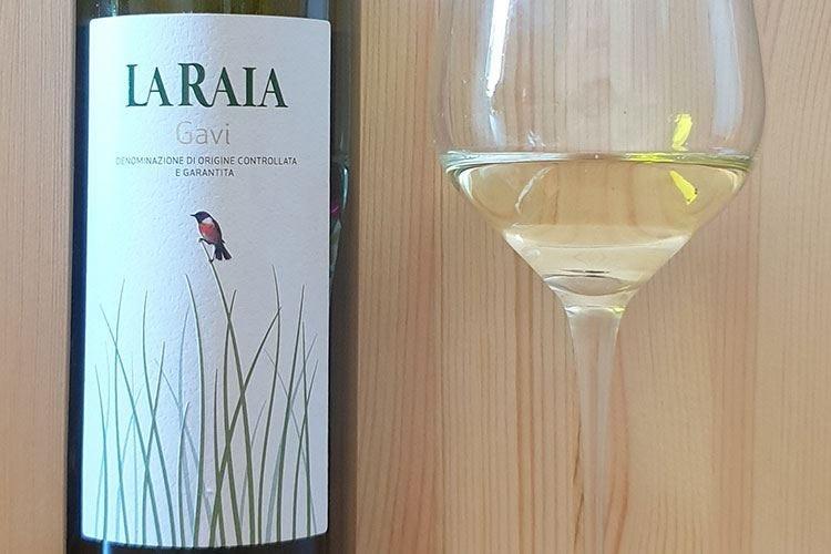 £$Ripartiamo dal vino$£ Gavi Docg 2019 La Raia