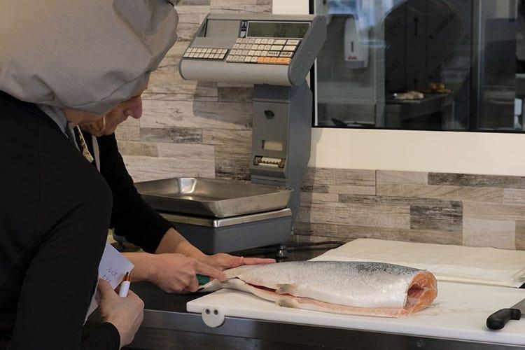 Daniela Tonello istruisce su come lavorare il pesce - I Maestri raccontano... Il gastronomo gourmet