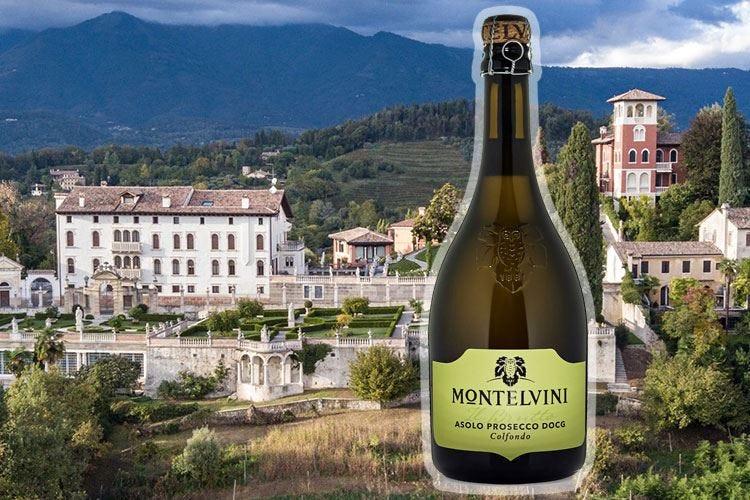 """""""Il Brutto"""" di Montelvini New entry della linea Serenitatis"""