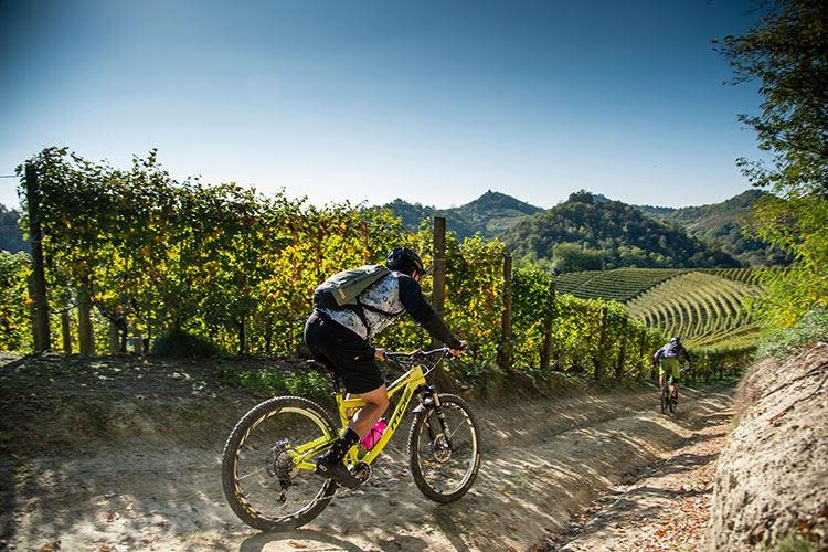 Il Roero punta sull'attrattiva turistica tra percorsi panoramici, vino e buon cibo