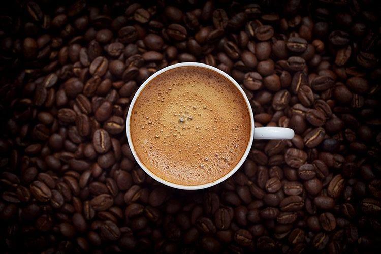 International Coffee Tasting: 5 nuove medaglie all'Italia