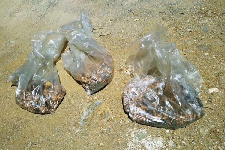 """""""La Pelosa"""" smoke free 20mila cicche raccolte in due giorni"""