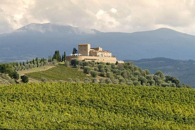 La primavera al Castello di Velona Buona tavola, trattamenti e... Brunello