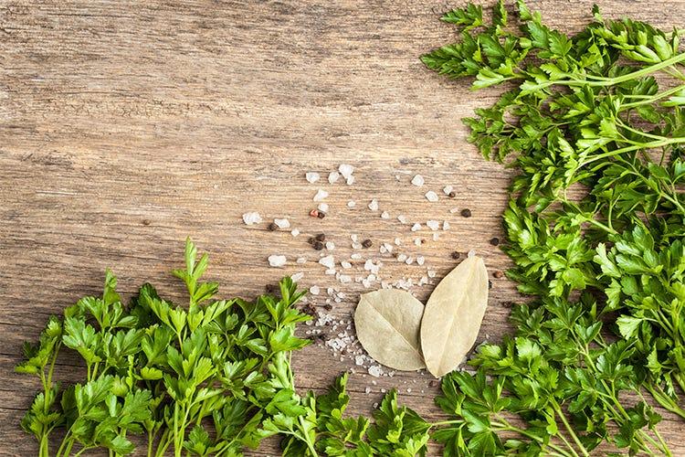 Le piante aromatiche in cucina Un ciclo di eventi firmato Valbona ...