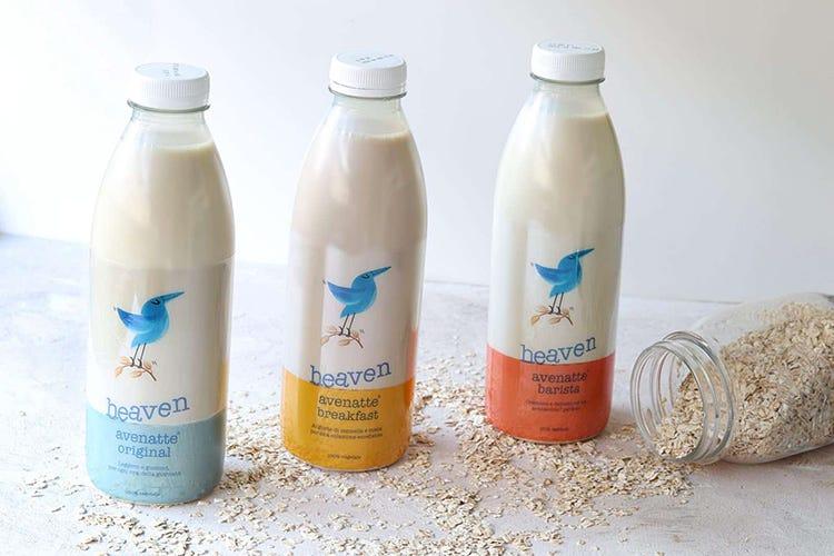 Heaven arriva nella Gdo Il latte di avena conquista