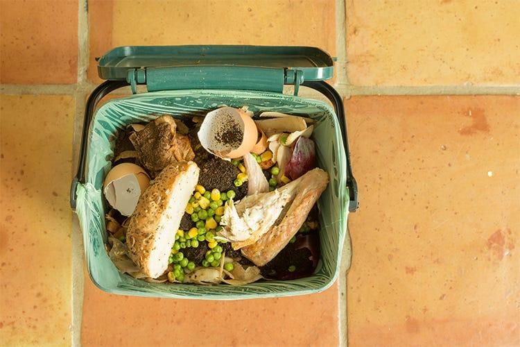 Lotta allo spreco alimentare inefficace Denuncia della Corte dei Conti Ue - Italia a Tavola