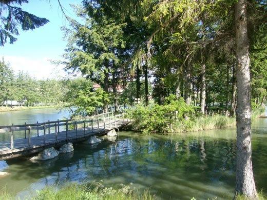 Riunioni di lavoro all 39 hotel miramonti su un 39 isola in - Parco laghi bagno di romagna ...