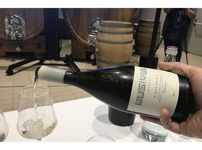 Mezzacorona, nasce MusivumLinea di vini che esalta il territorio