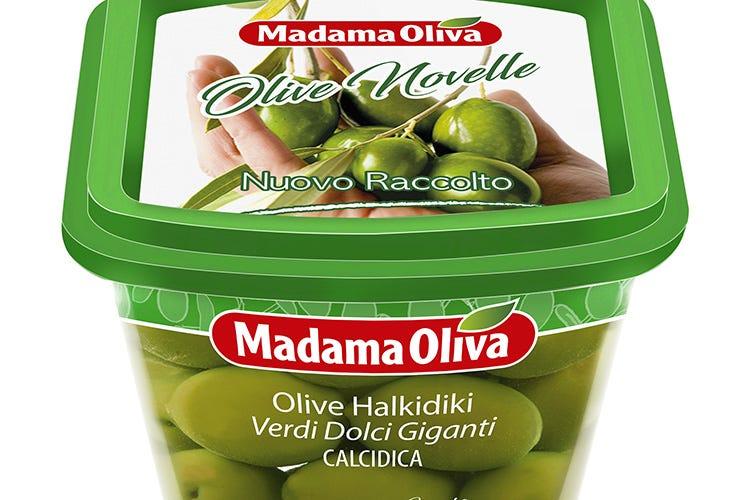 Le olive del nuovo raccolto di Madama Oliva Olive Novelle, l'idea vincente di Madama Oliva
