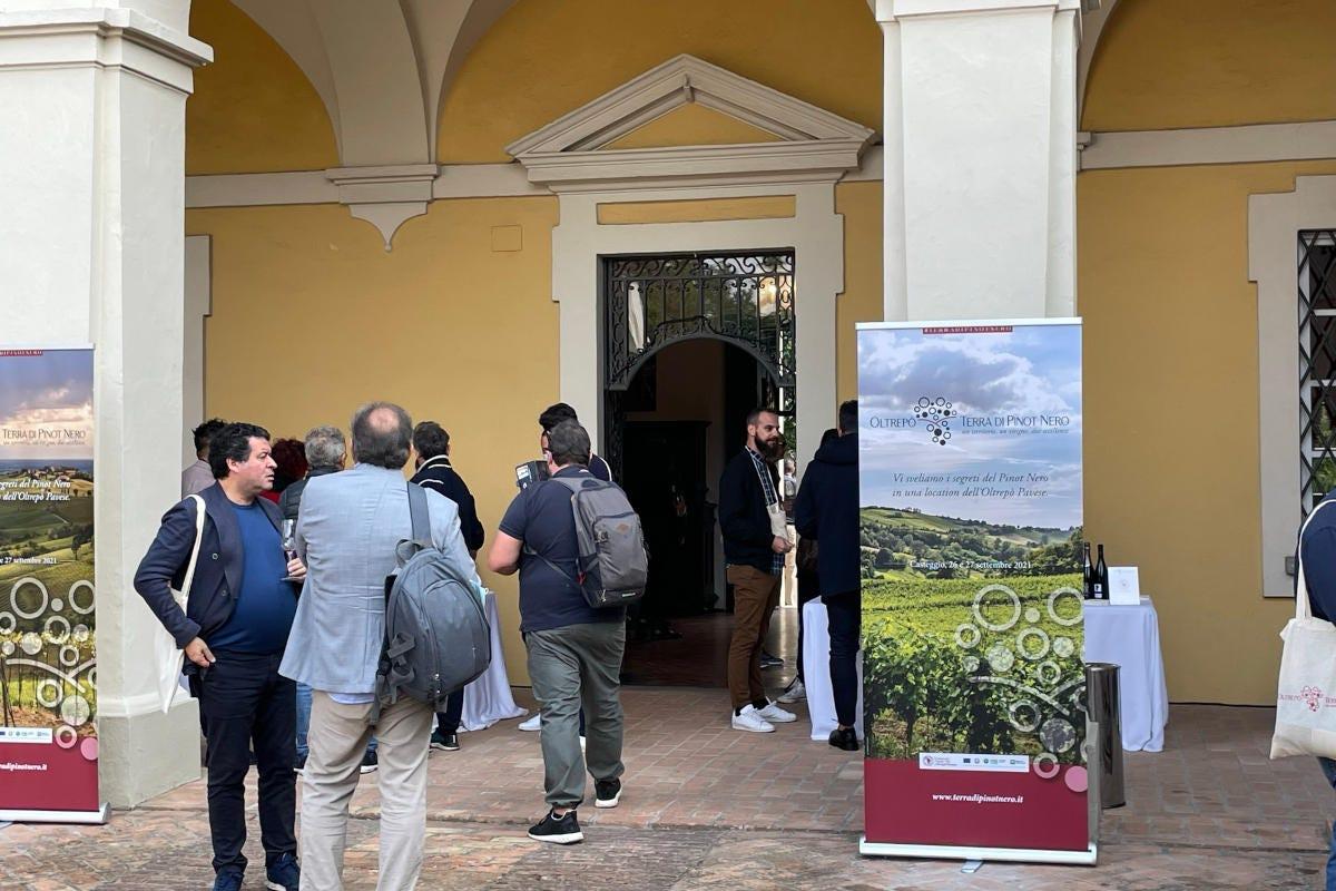 Oltrepò - Terra di Pinot Nero (l'evento) Pinot nero, anima di un territorio e segno di unità per l'Oltrepò pavese