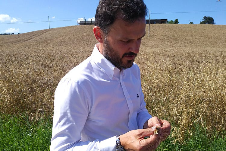 Massimo Mancini (Pastificio Mancini Un viaggio italiano dal grano alla pasta)