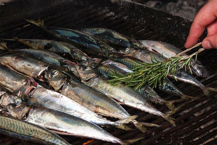 Al Museo del Gusto di Frossasco il corso per imparare a grigliare il pesce