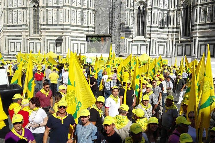 Cinghiali selvatici, la Coldiretti protesta a Firenze: è invasione! - Italia a Tavola