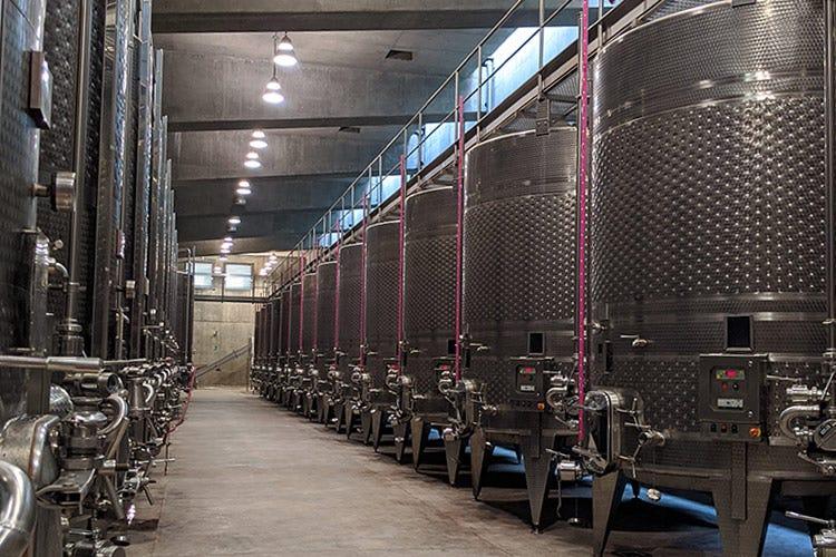 La vinificazione in acciaio - Rocca di Frassinello, tour virtuale fra vini minerali e accoglienza