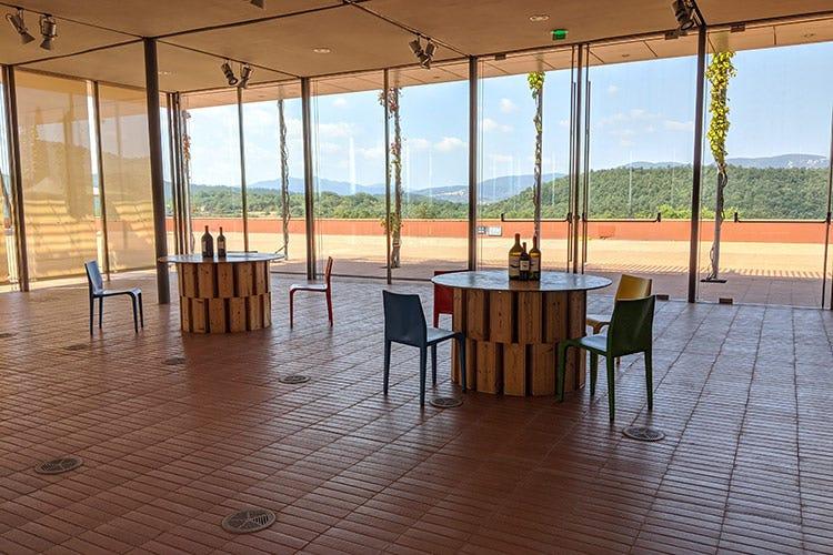 L'ampia sala degustazione - Rocca di Frassinello, tour virtuale fra vini minerali e accoglienza