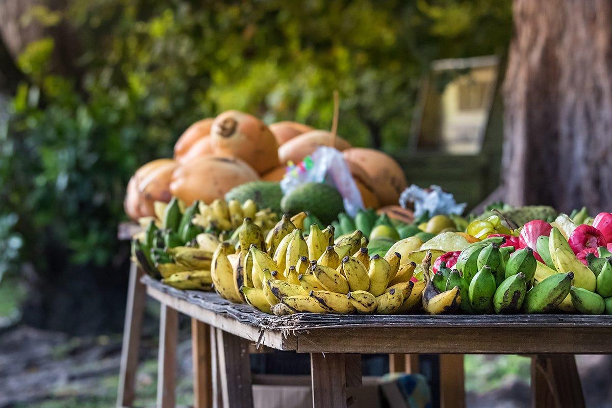 Seychelles  - Banane e platanos verde su un tavolo di legno all'aperto sulla strada principale di Praslin