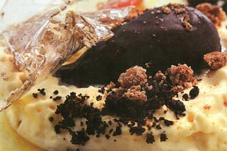 Spumoso al mascarpone e tartufo, gelato al cacao e arancia candita