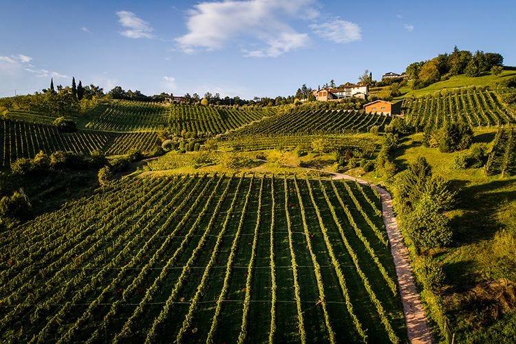Strada del Vino Valcalepio meta del turismo enogastronomico