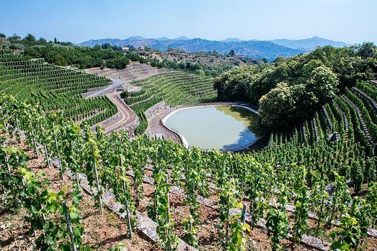 Tenute Orestiadi e La Gelsomina Ambasciatrici del vino siciliano
