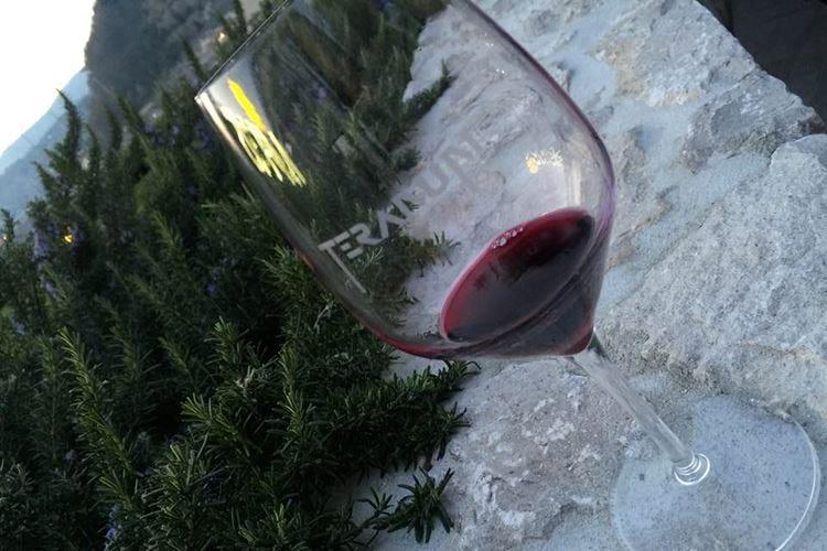 Teranum e i vini rossi del Carso La magia delle degustazioni fronte-mare