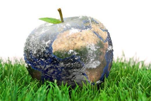 giornata mondiale dell'alimentazione 800 milioni di persone senza