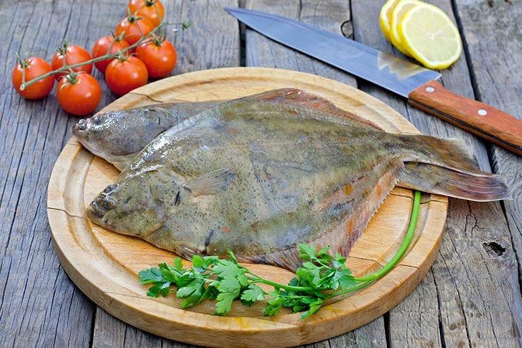 In Istria tornano le Giornate della sogliola Quattro tappe tra ricette e assaggi
