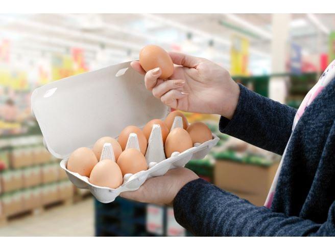 Uova tutelate dalla timbratura Rolfi: «Controlli rigorosi, alta qualità»