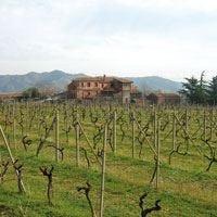 Agriturismo Valle Galfina Tutto il gusto dell'Etna