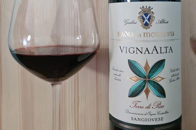 Il mondo del Vino - cover