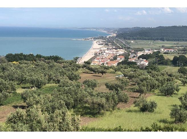 Vini d'Abruzzo, il salto di qualità Export 2018  in crescita del 6,4%