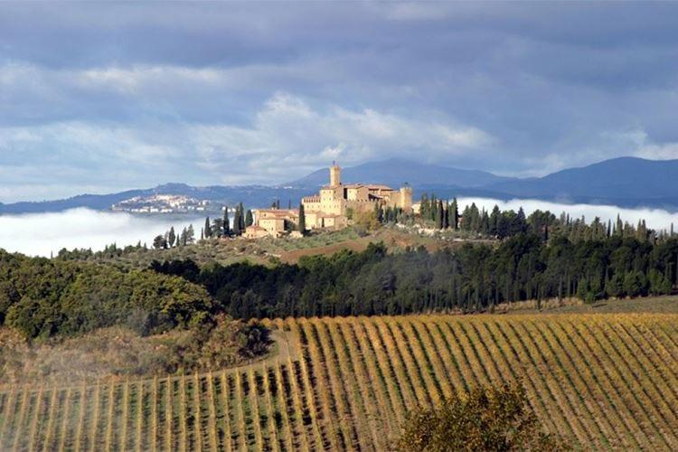 Vinitaly, prima edizione per 5Stars Wines 458 vini, Banfi migliore cantina dell'anno