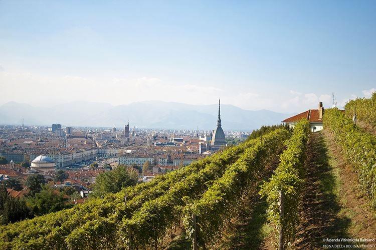 Torino celebra il vino In un mese oltre 40 eventi